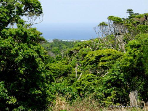 海が見える高台の土地