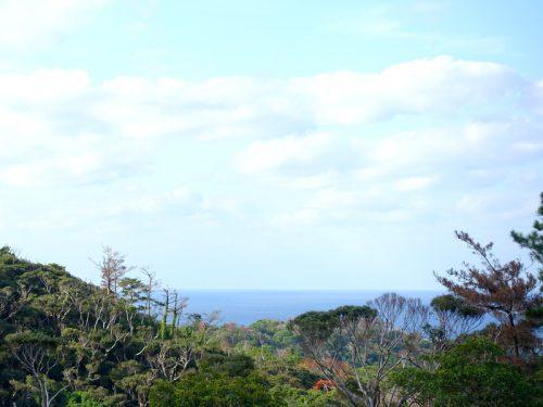 今帰仁村兼次の海が見える土地