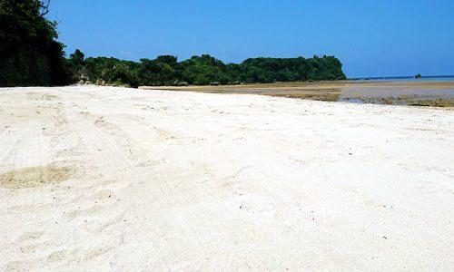 今帰仁村のビーチ付き土地